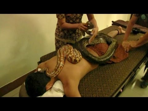 В Индонезии предлагают массаж змеями