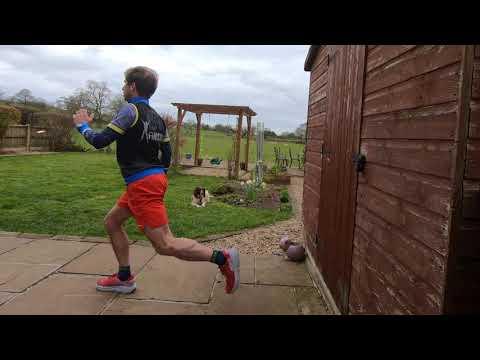 Reverse Lunge to Sprinter Start