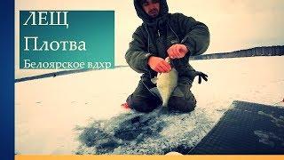 Зимняя рыбалка в свердловской области на леща