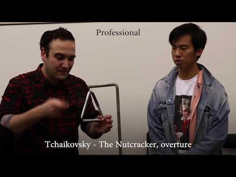 Professional vs Beginner Percussionist