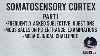 Somatosensory Cortex - Detailed Guyton Explanation - Part 1/2