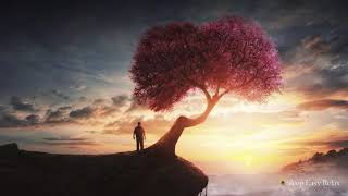 Healing Instant Calm, Beautiful Relaxing Music for Sleep, Stress and Anxiety Relief ★ 47