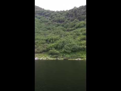 Video che pesca nellestate in Samara