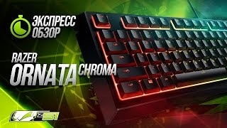 Коротко о главном - Razer Ornata Chroma!