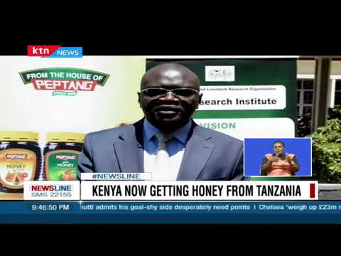 Locust invasion hits bee keepers, says fumigation killed bees across farms