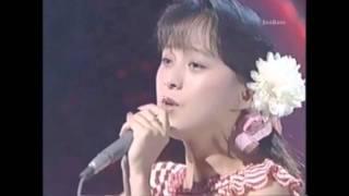 アマリリス/渡辺美奈代