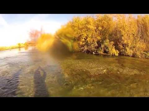 FlyFishing Idaho Fall 2013
