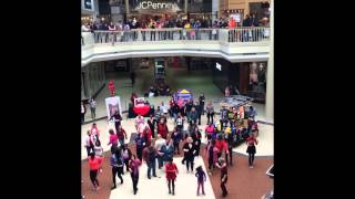 preview picture of video 'One Billion Rising - Roanoke 2015'