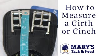 How to Measure a Girth or Cinch