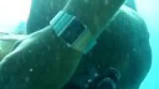 preview picture of video 'Freedive illetes (palma de mallorca)'
