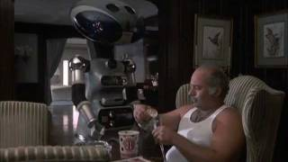Paulie And His Robot, The Love Of His Life