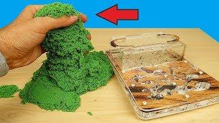 Реакция муравьев на кинетический песок! Почему они это сделали? Муха из Китая! alex boyko