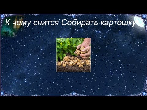 К чему снится Собирать картошку (Сонник)