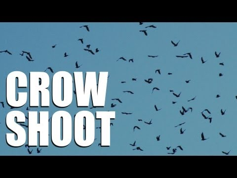 Crow shooting with Andy Crow (CrowHow Ep2)