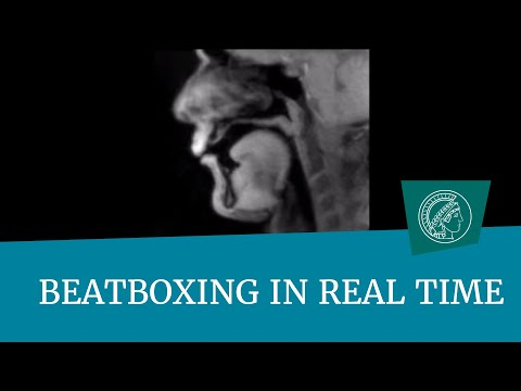 Realtime MRI scan of a guy beatboxing