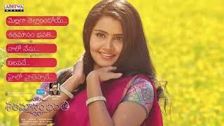 Shatamanam Bhavati Telugu Movie Full Songs Jukebox || Sharwanand, Anupama, Mickey J Meyer