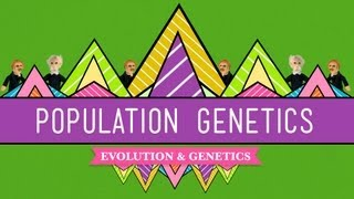 Population Genetics: When Darwin Met Mendel - Crash Course Biology #18