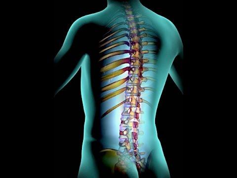 Часто болят суставы в коленях