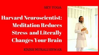 Harvard Neuroscientist: Meditation Reduces Stress And Literally Changes Your Brain