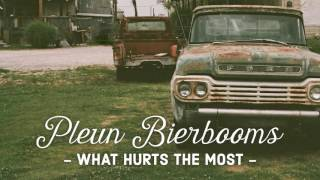 Pleun Bierbooms  What Hurts The Most The Voice Of Holland 2016/2017 Finals