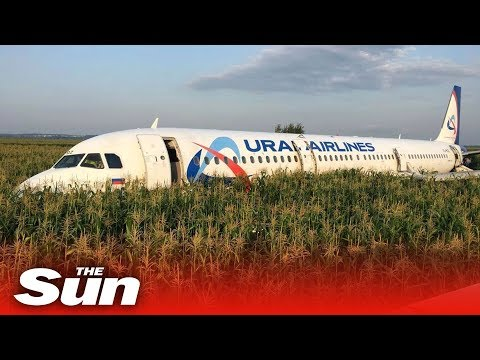 "Pilot successfully ""lands"" passenger jet in cornfield after a double bird strike"