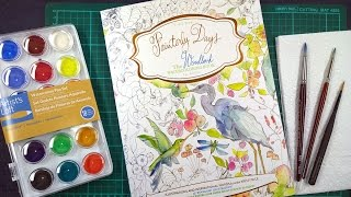 Colouring Book Review Painterly Days Plus Tips On How To Use Watercolours