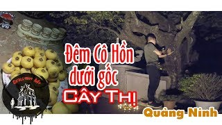 Scary Night With The Holy Decandra Tree In Mong Cai | Exploring Haunted Places Ep. 37 - Part II