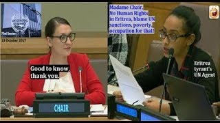 UN told No Human Rights in Eritrea, blame poverty, occupation, sanctions for that!