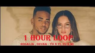 [1 HOUR LOOP] Rosalia, Ozuna   Yo X Ti, Tu X Mi