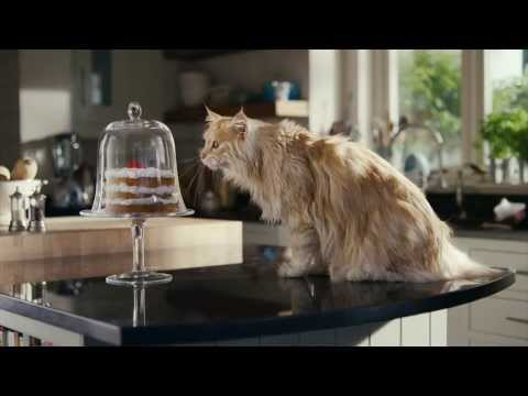 Commercial for O2 Refresh (2013) (Television Commercial)