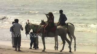 Mandvi Beach, Kutch