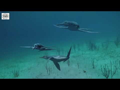 Dinosaurs Of The Deep Documentary Wildlife Discovery Animals Channel 2021