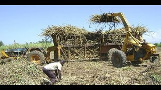 Sugarcane farmers organization rejects report | Week in Perspective