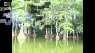 John Anderson   Seminole Wind Lyrics