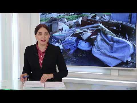 Новости Псков 09.11.2019 / Итоговый выпуск