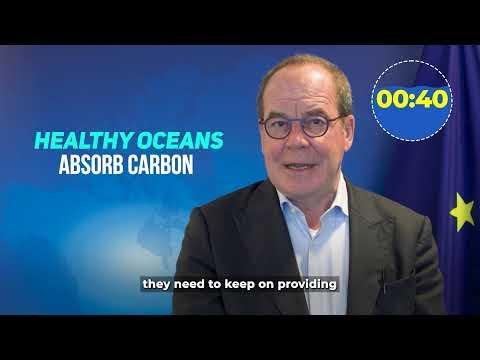 In 60 seconds | Marc Vanheukelen | Why does the ocean matter?