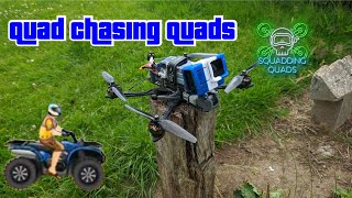 """Quad chasing quad fpv vs motorbike drone chasing 7"""" flywoo"""