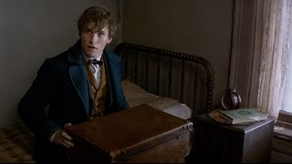Гарри Поттер, Fantastic Beasts and Where to Find Them - Announcement Trailer [HD]
