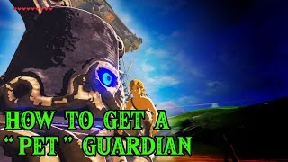 How to Get a Pet Guardian - The Legend of Zelda: Breath of the Wild