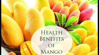 """Mango - """"King of Fruits"""" & """"Love Fruit"""" - Promotes Your Health In Many Incredible Ways"""