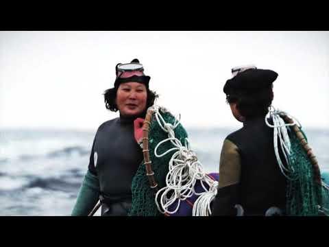 제주해녀문화 (2016년 유네스코 등재 신청영상)
