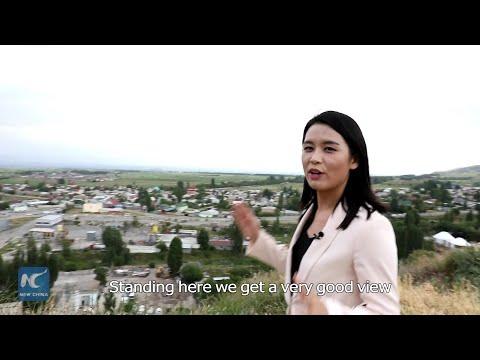 Sesso video della campagna contro lanalfabetismo