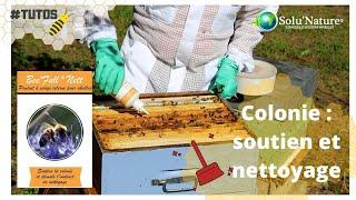 Bee'full nett soutient la colonie et stimule l'instinct de nettoyage