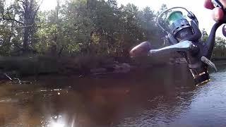 Рыбалка на реке пра 2020 отчет