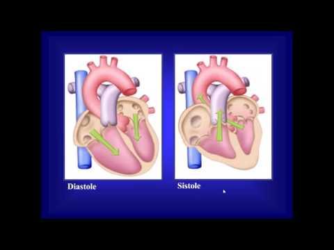 Apparecchi respiratori per lipertensione