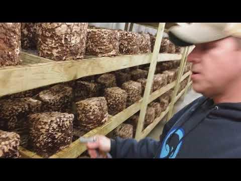 Mabilis kang nawala timbang pagkatapos ng panganganak