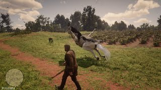 RDR2 Flying People and Horses LOL red dead redemption 2