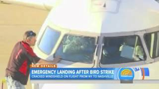 Plane's windshield cracked after bird strike, makes emergency landing