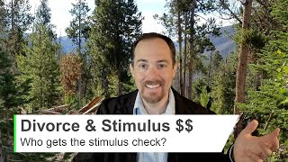 DIVORCED? Who can Claim the STIMULUS CHECK for a Dependent CHILD with a Custody Agreement