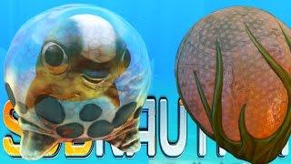 Subnautica - NEW CREATURE EGGS, CYCLOPS UPDATE, ROCKET BASE UPDATE - (Subnautica Gameplay)